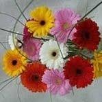 5 правил, чтобы цветы долго стояли