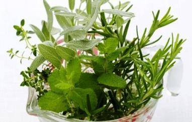 похудение на травяных настоях