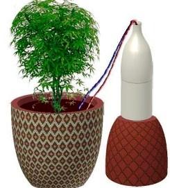фитильный  полив из пластиковых  бутылок