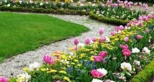 схемы посадки цветов