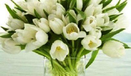 Чтобы цветы дольше стояли необходимо знать несколько правил