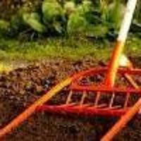Чудо лопата — помощник садовода