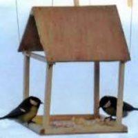 Кормушки для птиц своими руками фото оригинальные идеи в детский сад